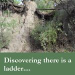 The ladder: discover the spiritual path that leads one out of misery to joy and your unique path.