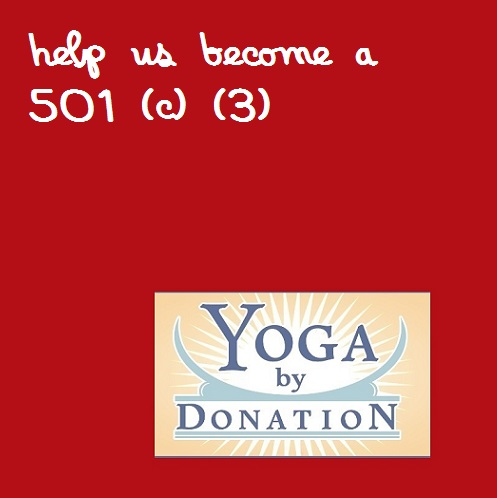Contribute to our 501(c)(3) campaign