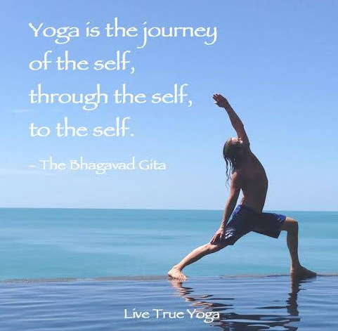 Ruleof Law and Yoga